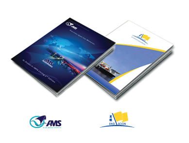 AMS | ESGroup | corporate folder design
